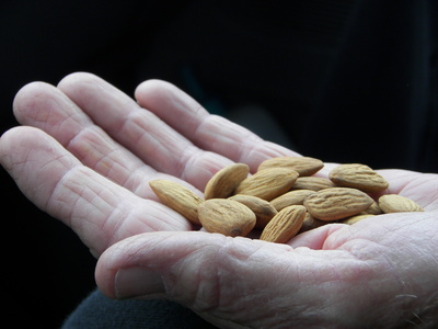 almonds in hand